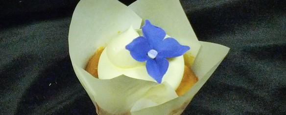 Lemon Raspberry Chiffon Cupcake